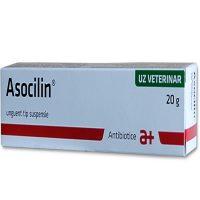Asocilin