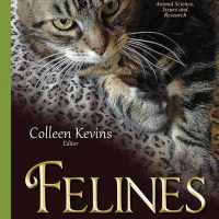 Felines: Common Diseases, Clinical Outcomes, and Developments in Veterinary Healthcare