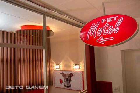 """""""Motelul dragostei"""" pentru… câini"""