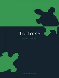 Tortoise (Animal)