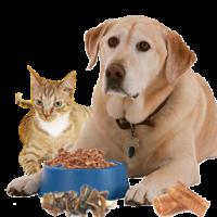 Hrana potrivita pentru caini si pisici